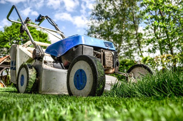 Trim grass to impove curb appeal