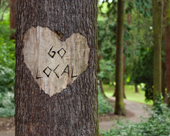 Tree with 'Go Local' carved into the trunk.