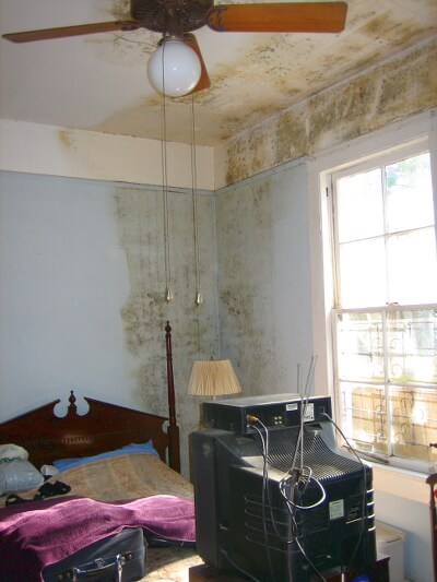 A bedroom with a mold problem that needs to be taken care of before buying or selling a home with mold.